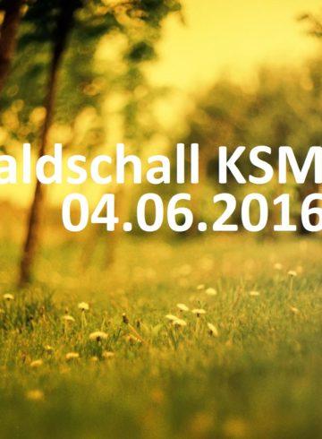 Waldschall KSM – Open Air mit DJ van Roman
